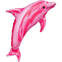 Pink_Dolphin_07460