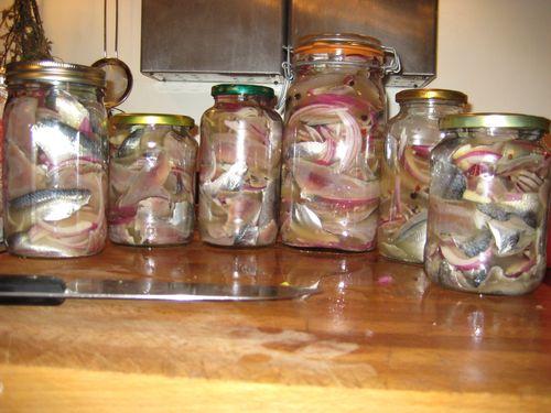 Pickled_herring