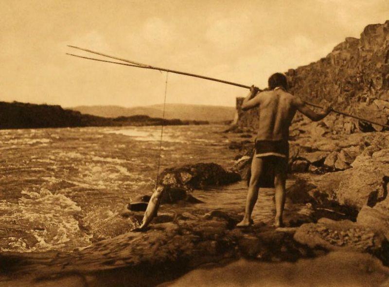 Salmon-fishing-wishham