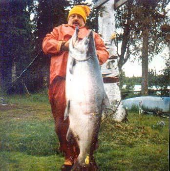 LG King Salmon